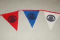 flagi_s_logotipom